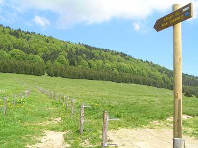 Sentieri del Cansiglio (foto Veneto Agricoltura)