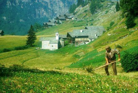 Risultati immagini per territorio bioregionale è curato da pastori e contadini,