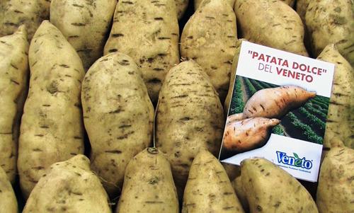 Particolare Patata500 La Patata Americana ...