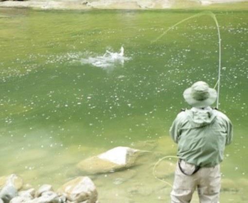 I giorni favorevoli per pescare in maggio