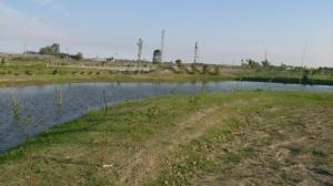 Laghetto per fitodepurazione acqua Ortodidattico