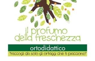 Logo Ortodidattico