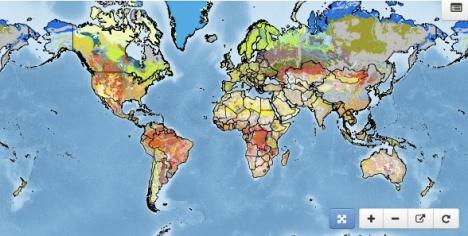 Mappa suolo terra