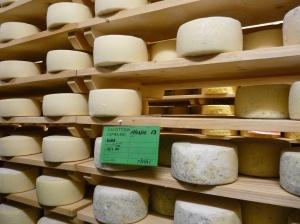 scaffalutura formaggi bio foto Beatrice Tesserin