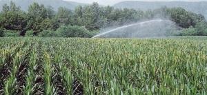 4-Irrigazione-in-Agricoltura_html_57386c50-e1437129203987