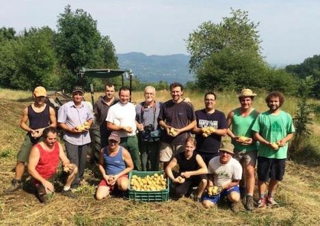 Gruppo coltivatori patate