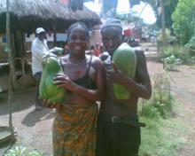contadini con papaya